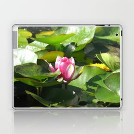 Nymphaea lotus Laptop & iPad Skin