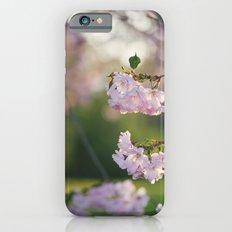Cherry Tree Gorgeousness iPhone 6s Slim Case
