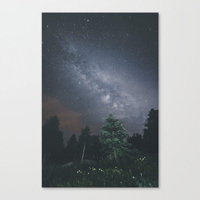 Milky way night sky Canvas Print