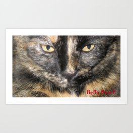 Golden Eyes. Hello Pearl Collection. Cat photography and art Art Print