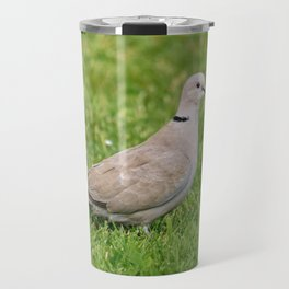 Grey Collared Dove Bird Travel Mug
