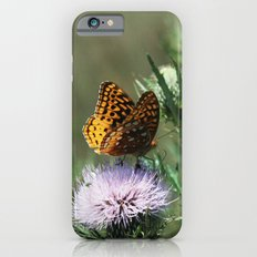 Aphrodite Fritillary  Slim Case iPhone 6s