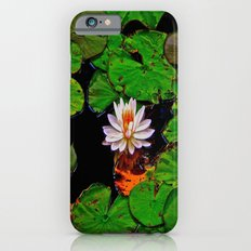 From the Lilypads Slim Case iPhone 6s