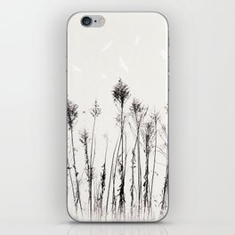 Dried Tall Plants and Flying White Birds iPhone Skin