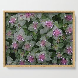 WILD SALVIA MAUVE AND GRAY GREEN Serving Tray