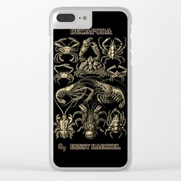 """""""Decapoda"""" from """"Art Forms of Nature"""" by Ernst Haeckel Clear iPhone Case"""