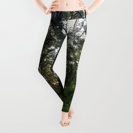 Spell of the forest fairies Leggings