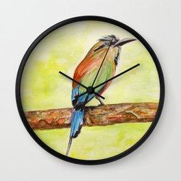 Turquoise Browed Motmot — National Bird of El Salvador Wall Clock