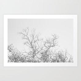 Dark Doom Forest Art Print