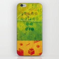 Un Dia iPhone Skin