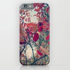 Colours of nature iPhone 6s Slim Case