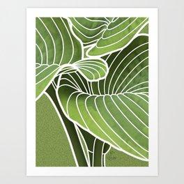 Hosta Detail Art Print