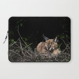 Napping Cat Laptop Sleeve
