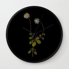 Cineraria Amelloides Mary Delany Delicate Paper Flower Collage Black Background Floral Botanical Wall Clock