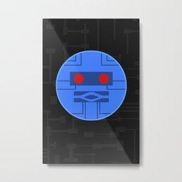 DX-14 Metal Print