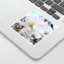 Magnolia 2 Sticker