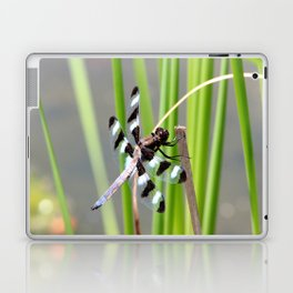 Dragon Fly 2 Laptop & iPad Skin