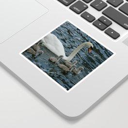 Mute Swan & Cygnets Sticker