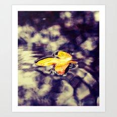 Rain pool Art Print