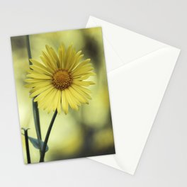 Great Leopard's Bane - Doronicum Orientale Flower - Little Leo Stationery Cards