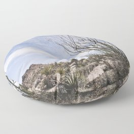 Palm Springs Ocotillo Floor Pillow