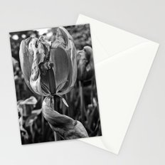 'DYING TULIPS' Stationery Cards