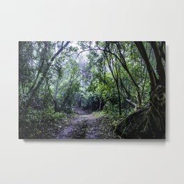 Misty Trail in the Rainforest of the Chocoyero-El Brujo Nature Reserve in Nicaragua Metal Print