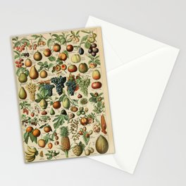 Adolphe Millot- Vintage Fruits Stationery Cards