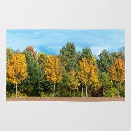 autumn  landscape Rug