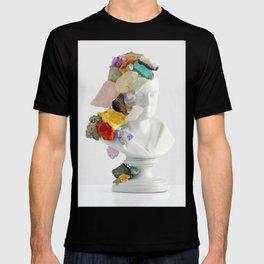 Inherit The Earth T-shirt