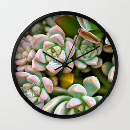 Dewy Delights Wall Clock