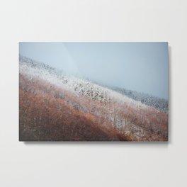 Frozen forest in Carpathian mountains Romania Metal Print