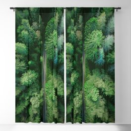 Arial Arboreal Blackout Curtain