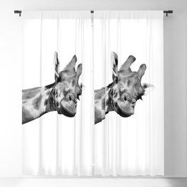 Black and white giraffe Blackout Curtain