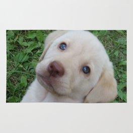 Cutie Pie yellow Lab puppy Rug