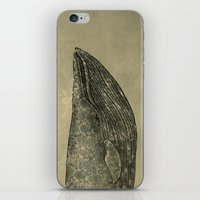 damask iPhone & iPod Skins featuring Damask Whale  by Terry Fan
