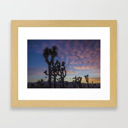 Sunset in Joshua Tree National Park Framed Art Print