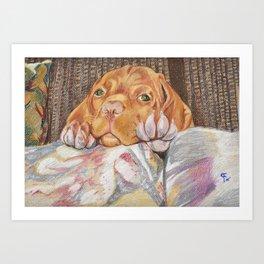 Chavis Art Print