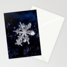 Winter Joy III Stationery Cards