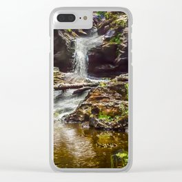 Ducklings swimming at the waterfall Clear iPhone Case