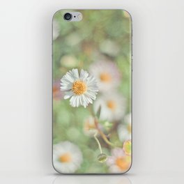 Sunbathing Daisies iPhone Skin