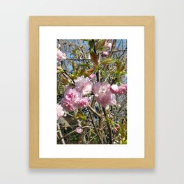 Peonies in Kawasaki Framed Art Print