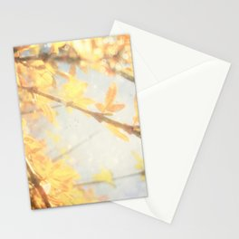 Sunlight Stationery Cards