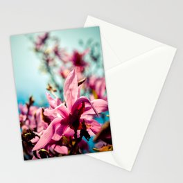 Silver Lining Stationery Cards