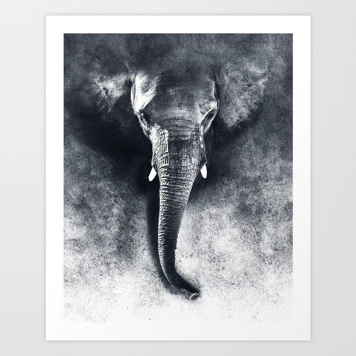elephant black and white Kunstdrucke