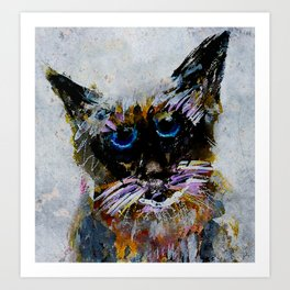 Old Cat Art Print