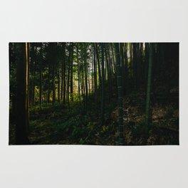 Kiso Valley Shadows Rug