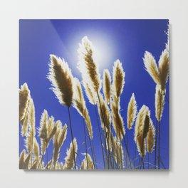 Backlit Blue Metal Print
