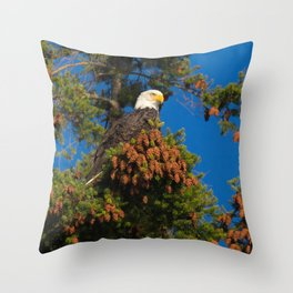 Bald Eagle in Pine Tree Throw Pillow