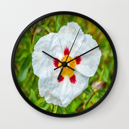 The Lost Gardens of Heligan - Rockrose Wall Clock